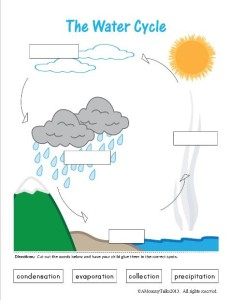 Delicate image intended for water cycle printable